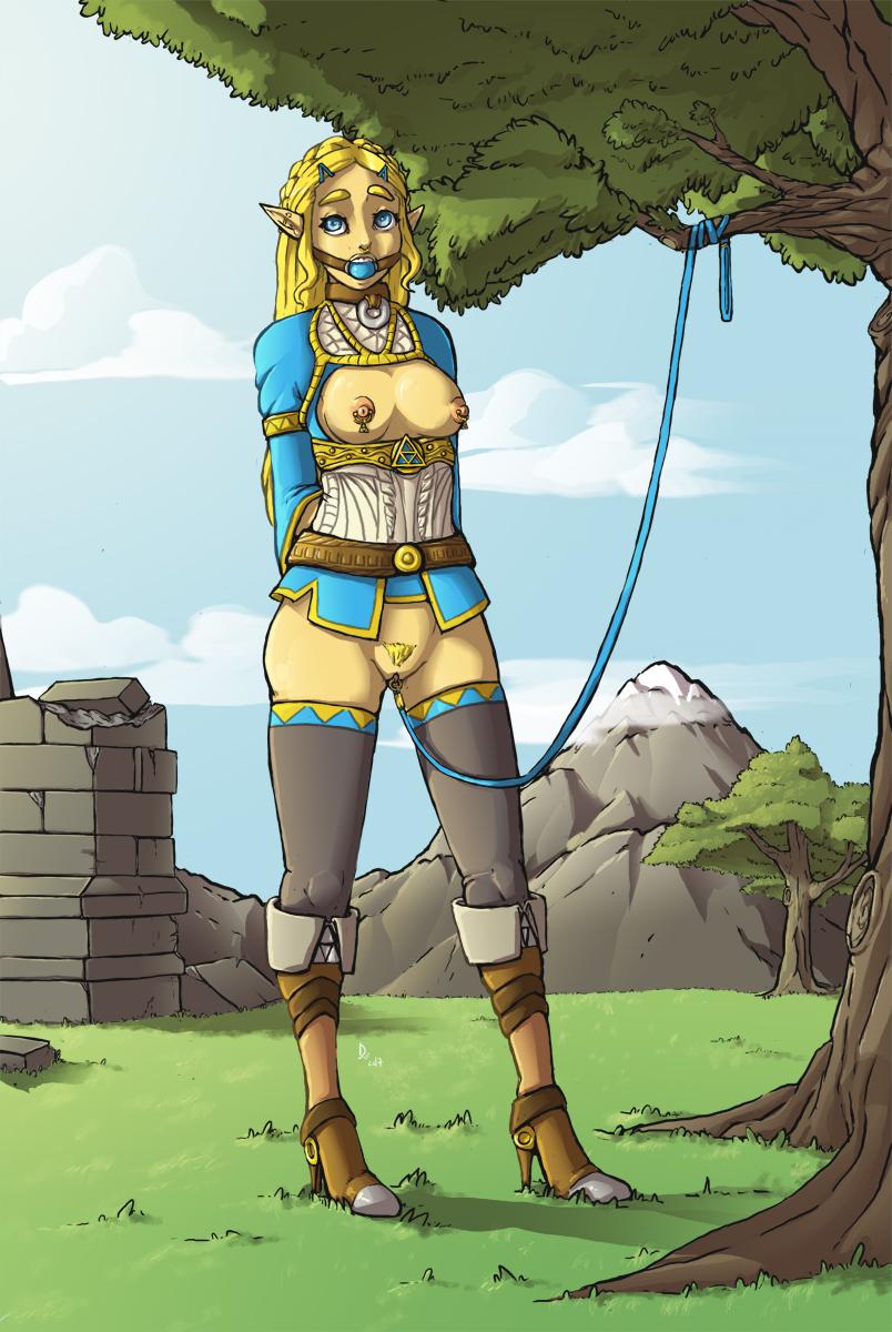 the of of wild riju zelda breath legend Taimanin asagi ~kessen arena~