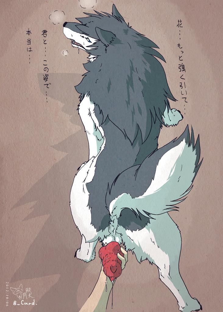 wolf - no ookami guy monshou Mahou no juujin foxy rena