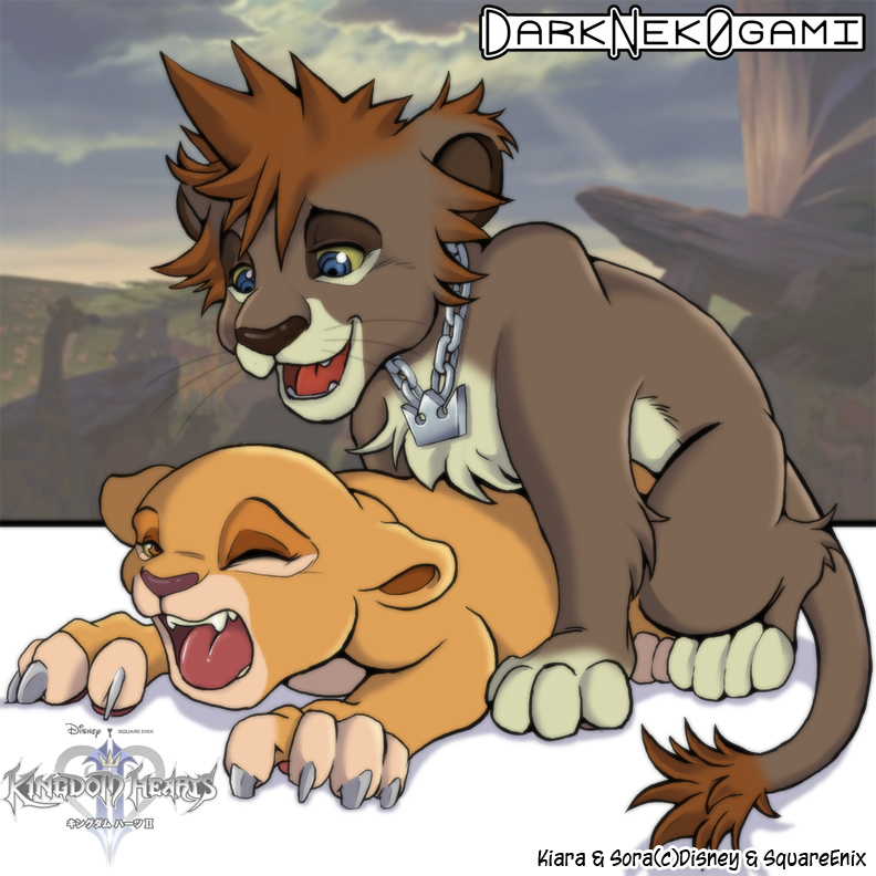 and lion o cheetara thundercats Madan no ou to vanadis ellen